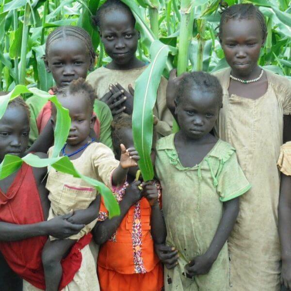 Sydsudan er i knæ, men disse børn fra Batil Flygtningelejr og godt 48.000 personer har fået livsvigtig mad gennem pengene fra Danmarks Indsamling.