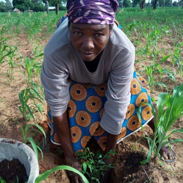 Tusindvis af mennesker i Togo har nu lært at dyrke deres egne afgrøder. Foto: Røde Kors