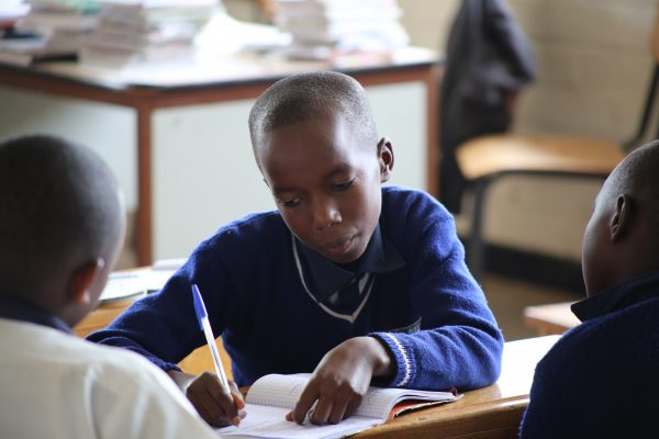 danmarks indsamling skoler